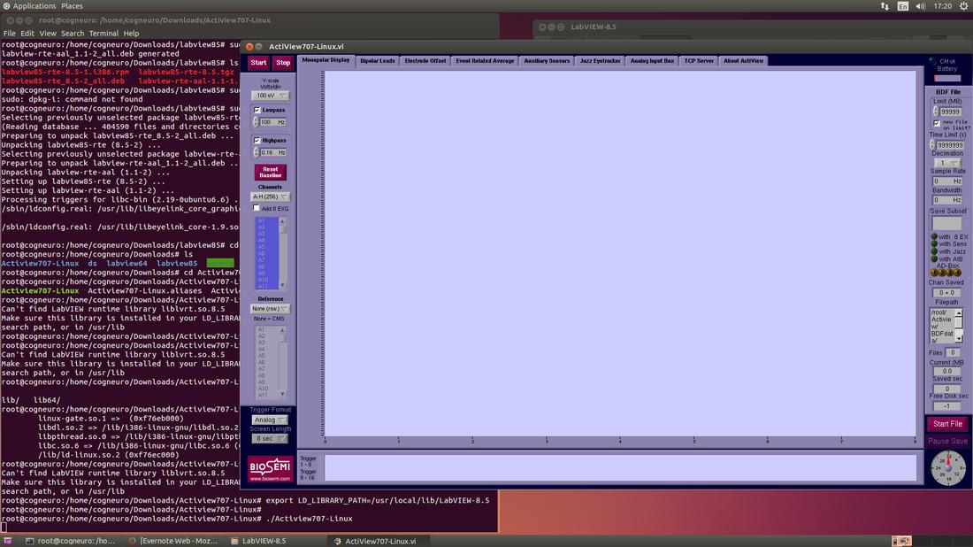 Install Biosemi Actiview on 64-bit Linux (Ubuntu)